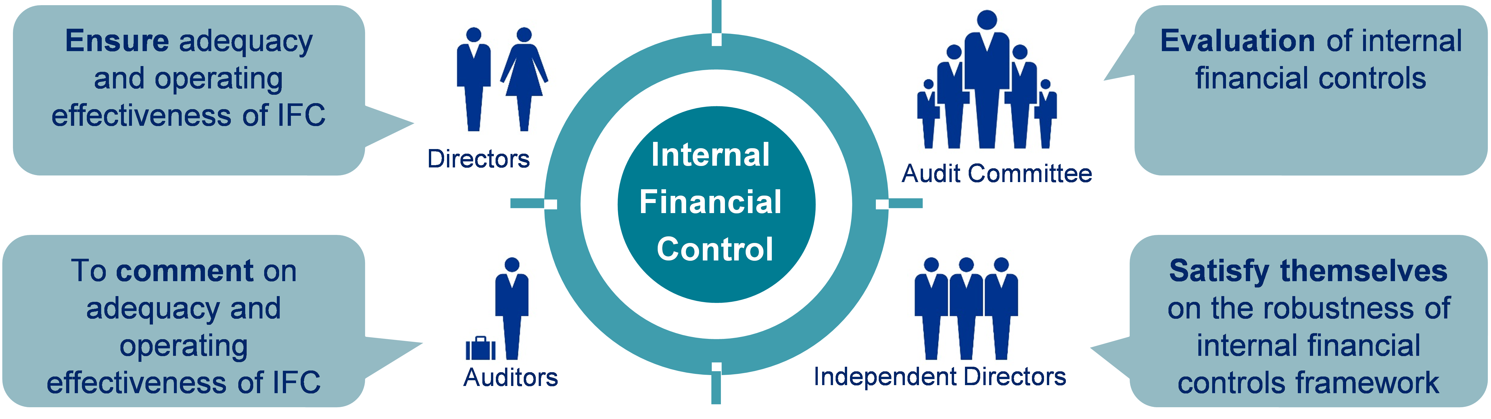 existence and operating effectiveness of Internal Financial Controls for various stakeholders